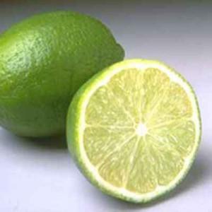 citron-vert-citrus-aurantifolia