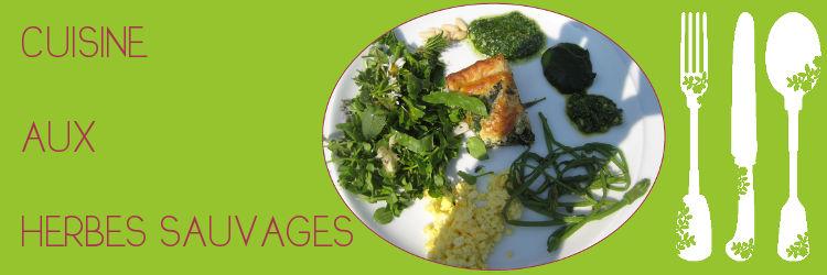 Plantes sauvages que du bonheur - Cuisine plantes sauvages comestibles ...