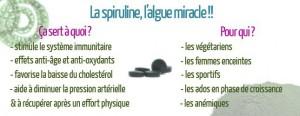 spiruline1