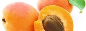 abricot-jpg_recette_cat