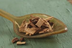 Aubier de tilleul - plante médicinale