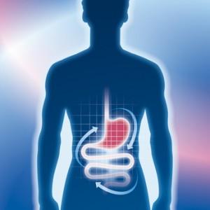 Magen, Darm, Magenmedizin, Untersuchung