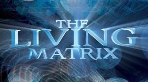 ob_2f1351_living-matrix-tn