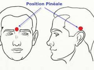 pourquoi-et-comment-detartrer-votre-glande-pineale-6917603