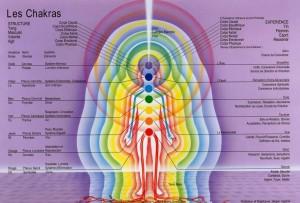 Chakras-couleurs-sens-organes-vitaux