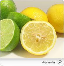 citron_lime_nu-1