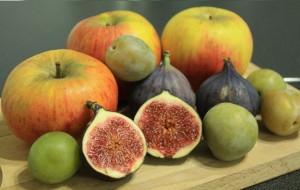 fruits-octobre