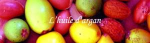 l huile d argan bio grossiste maroc