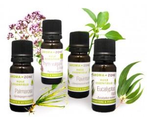 Montage-HE-ravintsare-eucalyptus-radie-thym-linalol-palmarosa