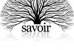 savoir_logo_reflectie