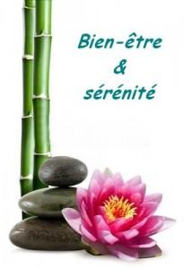 bambou-lotus-pierres-bienete-serenite