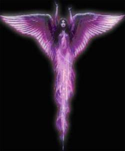 meditflammviolette