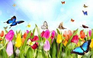dream-spring-2012-spring-time_2560x1600_96689-300x188