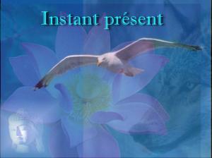 instan11