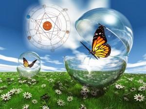 papillons bulles