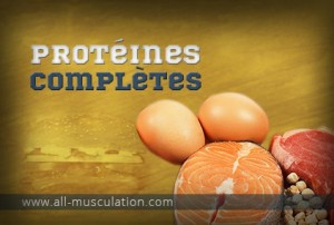proteines-completes