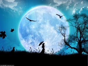 Veille de Lune, le jour de la nuit de l'âme