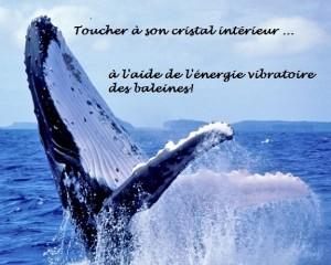 Toucher_a_son_cristal_interieur_ws1032016506