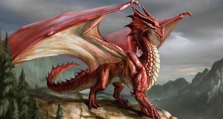Int grer l nergie des dragons que du bonheur - Images de dragons ...
