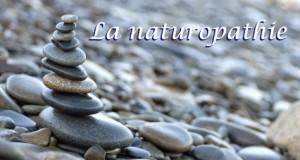 Sant___-_Naturopathie_-_Dossier