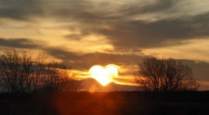 heart-570962_1280