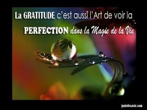 La-gratitude-cest-aussi-l-art-de-voir-la-perfection-dans-la-magie-de-la-vie-jouirdesavie