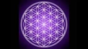 meditation guidée - Fleur de vie