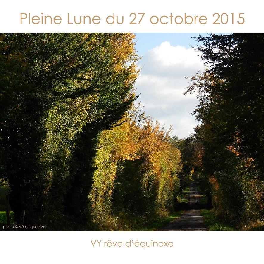 Articles sur la pleine lune du 27 octobre 2015 for Jardin lune octobre 2015