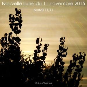 new-lune-11-11