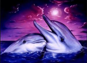 dauphins-700x509