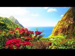 Harmonisez vos énergies et votre domicile ! Mandalas en musique(Relaxation et nature) F. Amathy