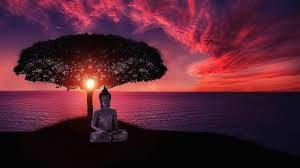 meditation-guidee-avec-langage-lumiere